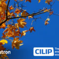 CILIP LMS Autum Showcase