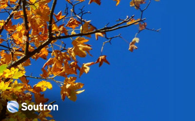Latest Updates from Soutron Autumn 2020